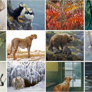 Robert Bateman Wildlife Art Notecards - Set of 5 Assorted