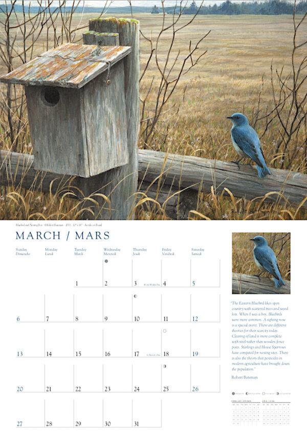 Robert Bateman 2022 Wall Calendar - Birds of Canada