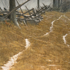 Pasture Trails - Red Fox - Signed Limited Edition Print by Robert Bateman