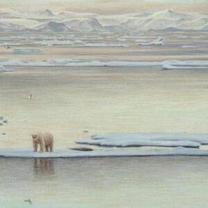 Arctic Ice - Polar Bear - Signed Limited Edition Print by Robert Bateman