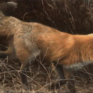 On the Move - Red Fox - Signed Limited Edition Print by Robert Bateman