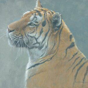 First Alert - Tiger - Signed Limited Edition Print by Robert Bateman
