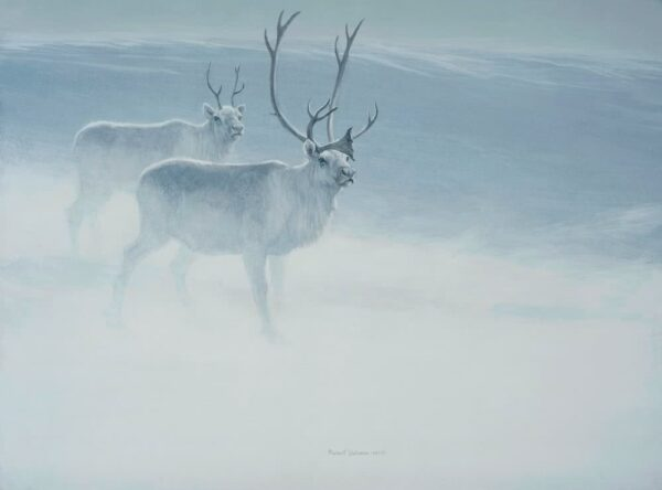 Peary Caribou - Signed Limited Edition Print by Robert Bateman