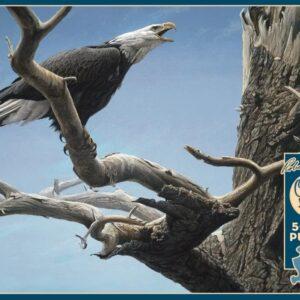 Call of the Wild - Bald Eagle Robert Bateman Puzzle - 500 Piece