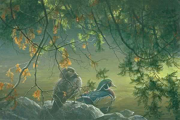 On the Pond - Wood Ducks - Signed Limited Edition Print by Robert Bateman