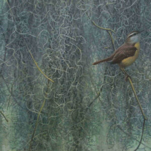 Song of the South - Carolina Wren - Signed Limited Edition Print by Robert Bateman