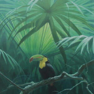 Under the Canopy - Toucan - Signed Limited Edition Print by Robert Bateman