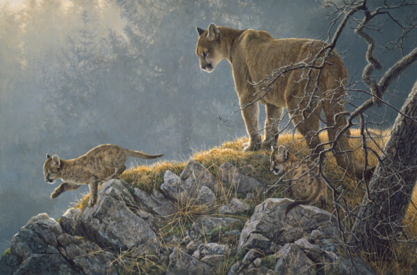 Excursion - Cougar and Kits - Signed Artist Proof Print by Robert Bateman