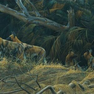 Painted Dogs - Signed Artist Proof Print by Robert Bateman
