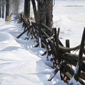 Edge of the Woods - Signed Artist Proof Print by Robert Bateman