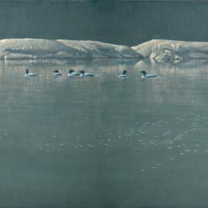 Loon Gathering at Big East - Signed Limited Edition Print by Robert Bateman
