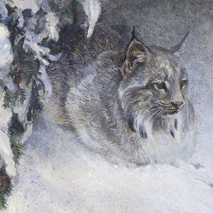Crouching Lynx - Signed Limited Edition Print by Robert Bateman