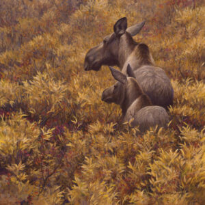 Fall Forage - Moose Cow & Calf - Signed Limited Edition Print by Robert Bateman