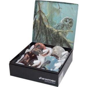 Robert Bateman Set of 4 Owl Mugs from McIntosh