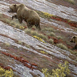 Alaska Autumn - Grizzlies - Signed Limited Edition Print by Robert Bateman