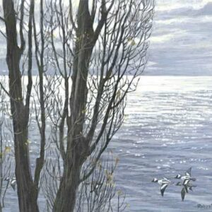 Poplar Tree and Buffleheads - Signed Limited Edition Print by Robert Bateman