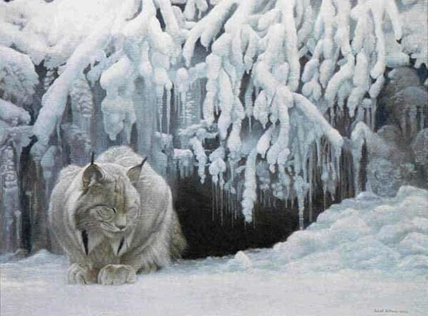 Dozing Lynx Robert Bateman Puzzle - 1000 Piece