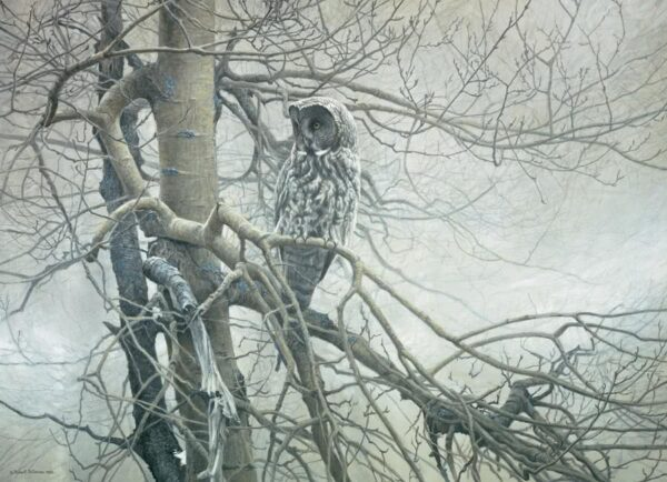 Ghost of the North Gray Owl Robert Bateman Puzzle - 1000 Piece