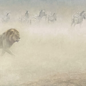Out of Range - Lion and Zebras - Signed Limited Edition Print by Robert Bateman