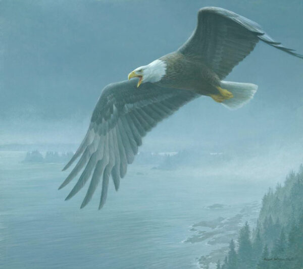 On The Wing - Bald Eagle - Signed Limited Edition Print by Robert Bateman